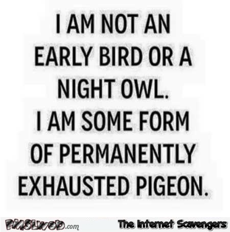 I'm not an early bird or a night owl funny quote @PMSLweb.com