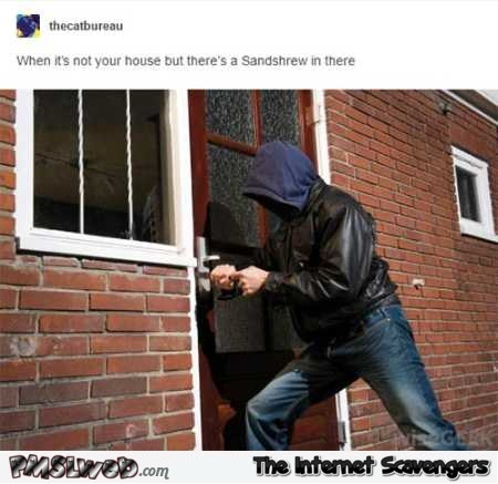 Funny breaking into a house to catch a Pokemon @PMSLweb.com