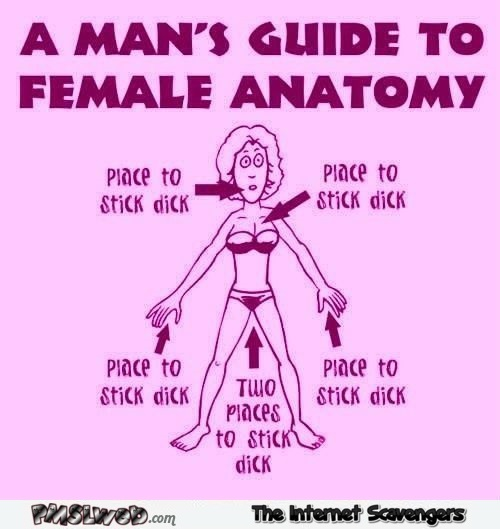 A man's guide to female anatomy adult humor @PMSLweb.com