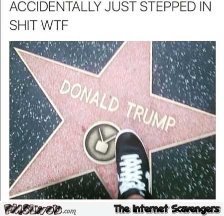 Accidently stepped in shit Trump humor @PMSLweb.com
