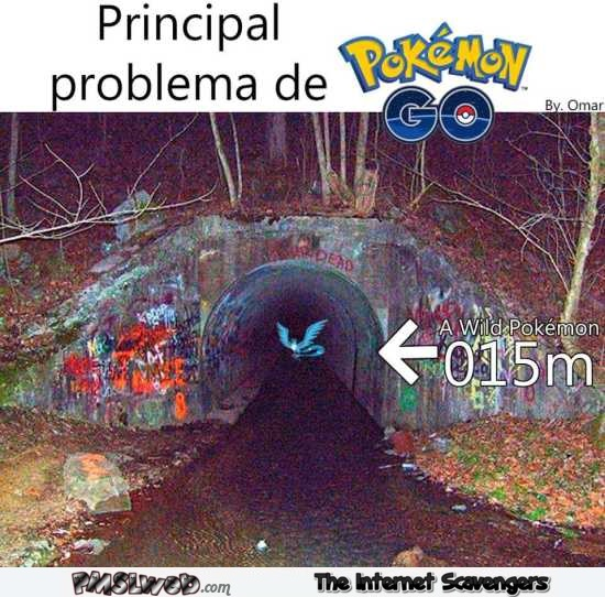 The problem with Pokemon Go humor – Pokemon Go funny pictures @PMSLweb.com