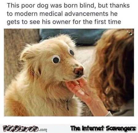 This poor dog was born blind humor @PMSLweb.com