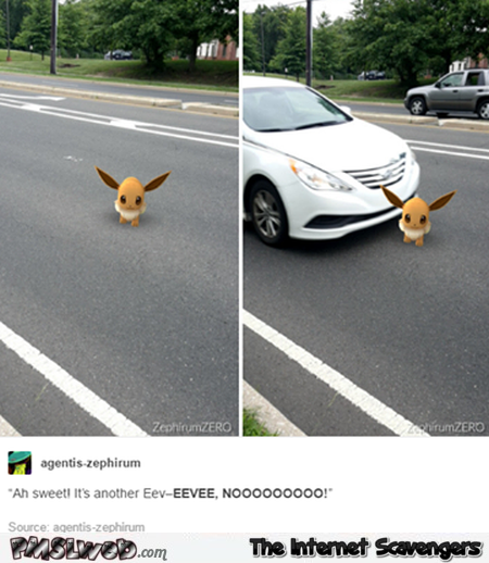 Pokemon appears on the road humor @PMSLweb.com