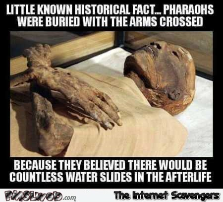 Why Pharaohs were buried with their arms crossed meme – Silly Wednesday picture collection @PMSLweb.com