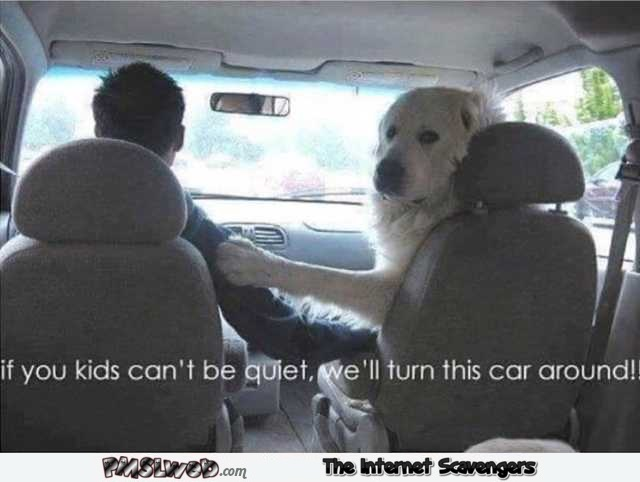 If you kids can't be quiet we'll turn this car around humor @PMSLweb.com