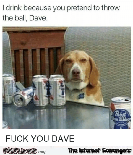 Funny why your dog drinks meme – LOL picture collection @PMSLweb.com