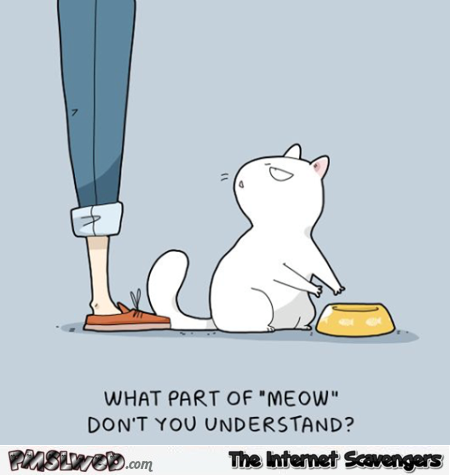 What part of meow don't you understand funny cartoon @PMSLweb.com