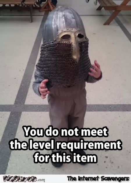 When you don't meet the level requirement funny gaming meme @PMSLweb.com