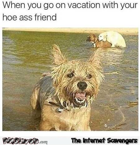 When you go on vacation with your hoe ass friend dank meme @PMSLweb.com