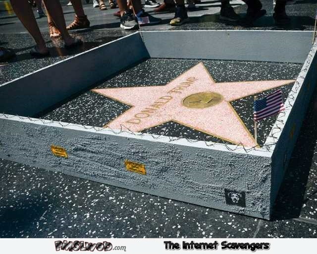Someone built a wall around Trump's star of fame humor @PMSLweb.com