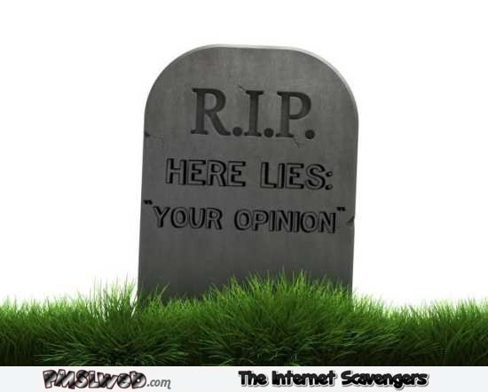 R.I.P your opinion sarcastic humor – Sarcastic Avenue picture collection @PMSLweb.com