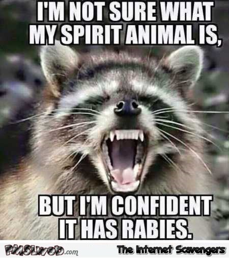 My spirit animal has rabies funny meme @PMSLweb.com