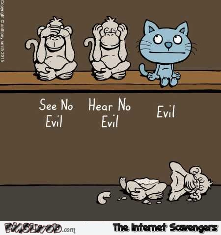 See no evil, hear no evil and cats funny cartoon - Funny Sunday nonsense @PMSLweb.com