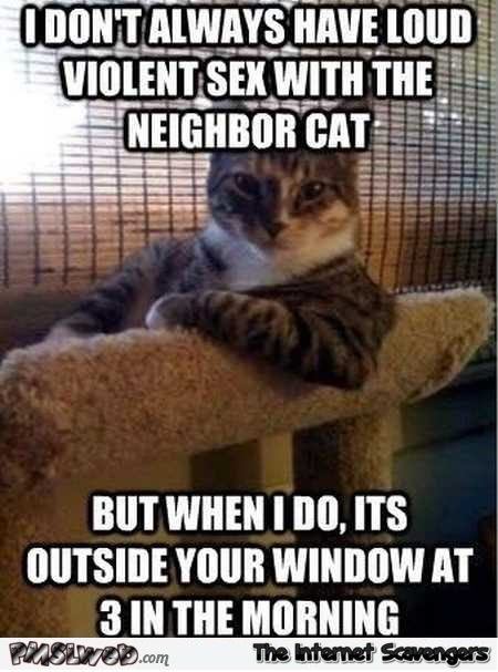 I don't always have loud sex with the neighbor cat funny meme @PMSLweb.com