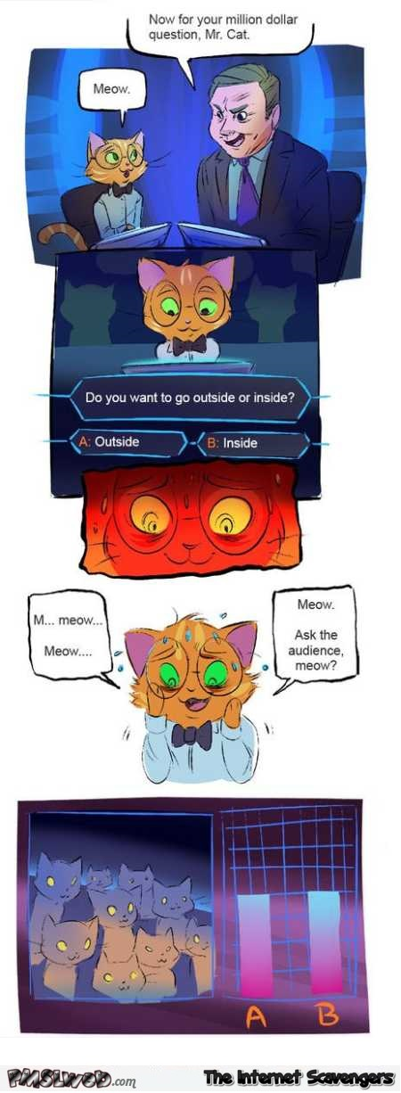 Cat on Who wants to be a millionaire funny cartoon @PMSLweb.com
