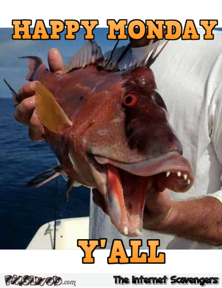 Happy Monday y'all funny fish meme @PMSLweb.com