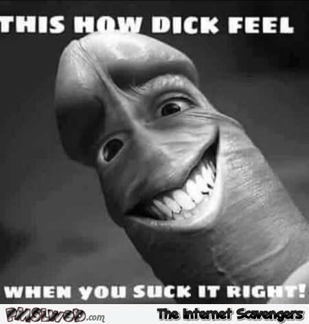 How Dick feels when you suck it right funny adult meme @PMSLweb.com