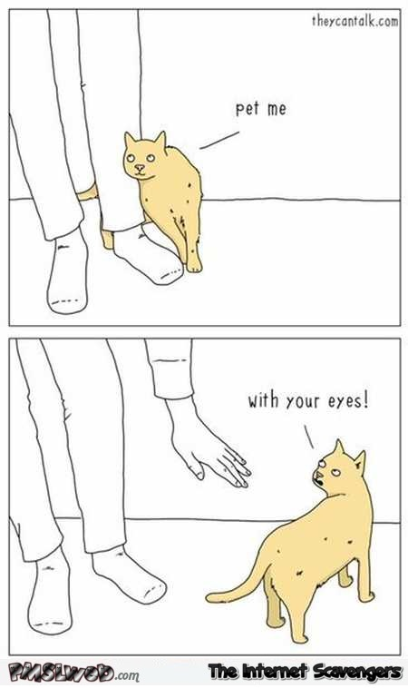 Pet me with your eyes funny cat cartoon @PMSLweb.com