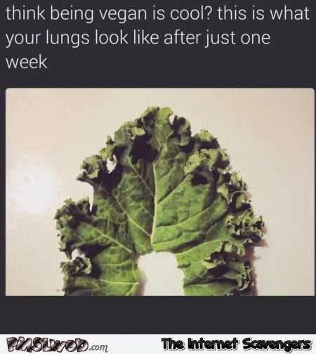 Your lungs after being a vegan for a week funny meme @PMSLweb.com