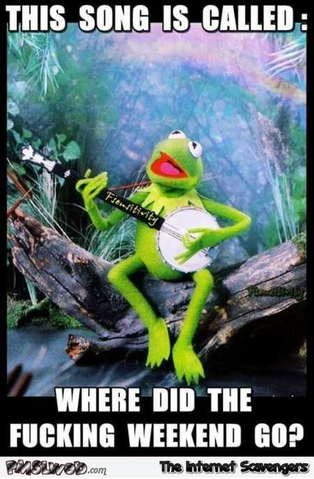 Where the fuck did the weekend go funny Kermit meme - Sunday PMSL pictures @PMSLweb.com