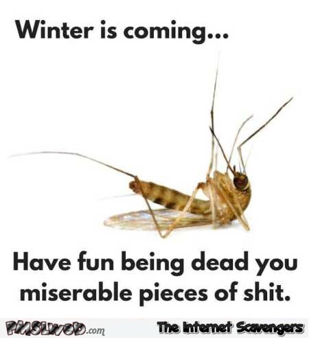 15 winter is coming funny mosquito meme winter is coming funny mosquito meme pmslweb