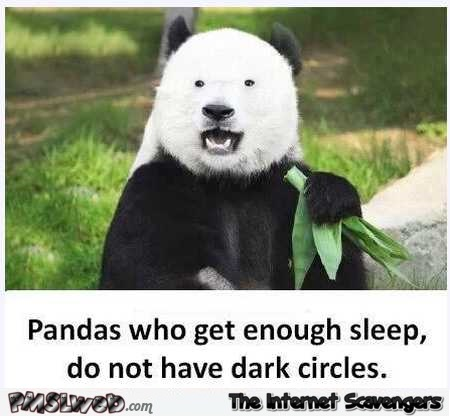 Pandas who get enough sleep don't have dark circles humor @PMSLweb.com
