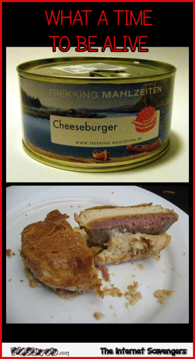 Funny cheeseburger in a can meme