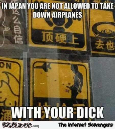 Don't take airplanes down with your dick funny Japanese sign