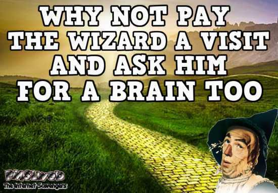 Ask the wizard of Oz for a brain sarcastic humor @PMSLweb.com