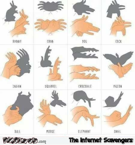 Shadow puppet guide @PMSLweb.com