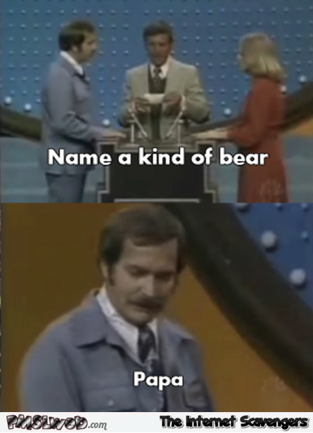 Name a kind of bear funny family feud meme @PMSLweb.com
