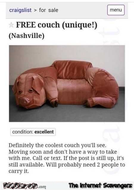 Free pig couch funny Craigslist offer
