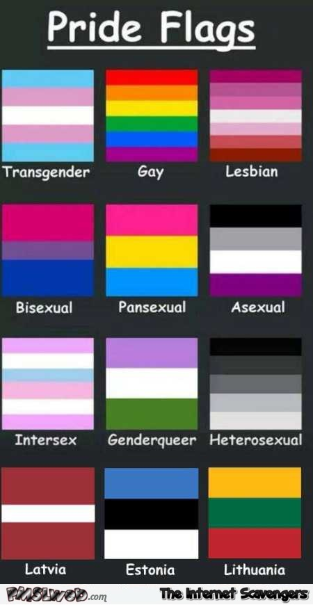Funny pride flags guide – TGIF LOL pictures @PMSLweb.com