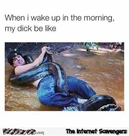 When I wake up in the morning my dick be like adult humor @PMSLweb.com