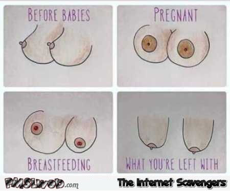 The life of a boob humor – Amusing Wednesday pictures @PMSLweb.com
