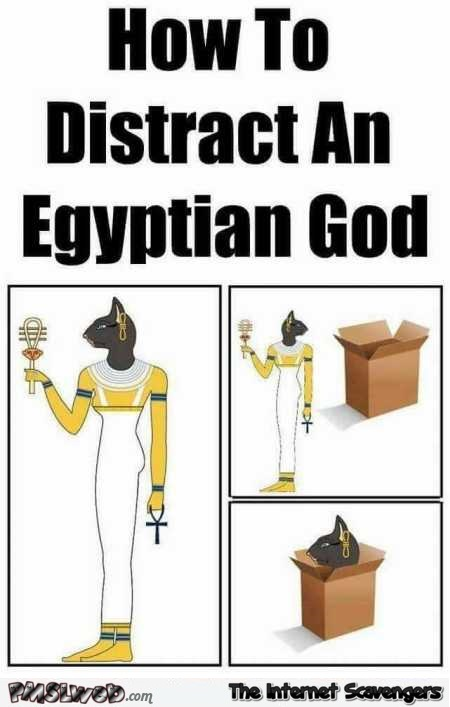 How to distract an Egyptian god funny meme @PMSLweb.com