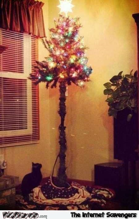 Funny Cat proof Christmas tree @PMSLweb.com