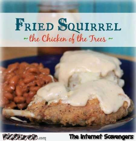 Funny fried squirrel recipe book @PMSLweb.com