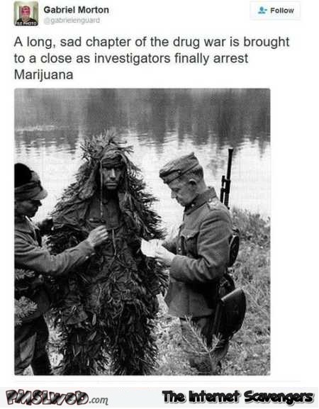 Investigators finally arrest Marijuana funny tweet – TGIF LOL pictures @PMSLweb.com
