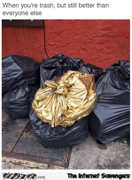 When you're trash but still better than the rest – Saturday LMAO collection @PMSLweb.com