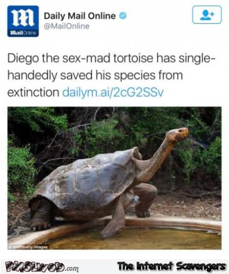 Sex made tortoise has saved his species from extinction funny news @PMSLweb.com