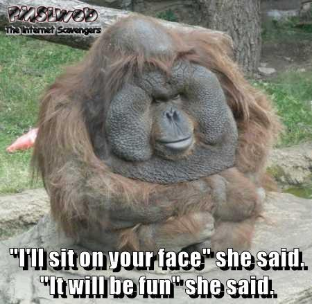 I'll sit on your face she said funny adult meme @PMSLweb.com