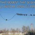 Pigeon realizes he should stay clear from McDonald's parking lot meme @PMSLweb.com