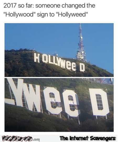 Someone changed the Hollywood sign into Hollyweed meme @PMSLweb.com