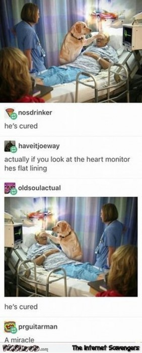 He's cured funny post fail come back