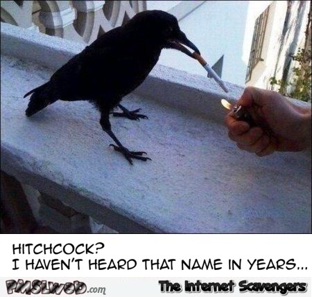 Hitchcock? I haven't heard that name in years funny meme @PMSLweb.com