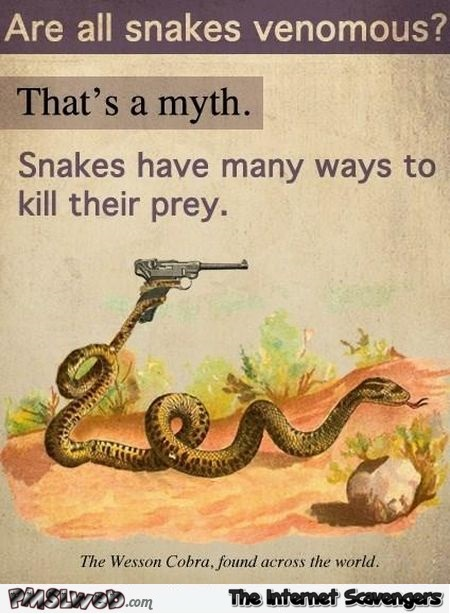 Are all snakes venomous funny fact - Funny picture boulevard @PMSLweb.com