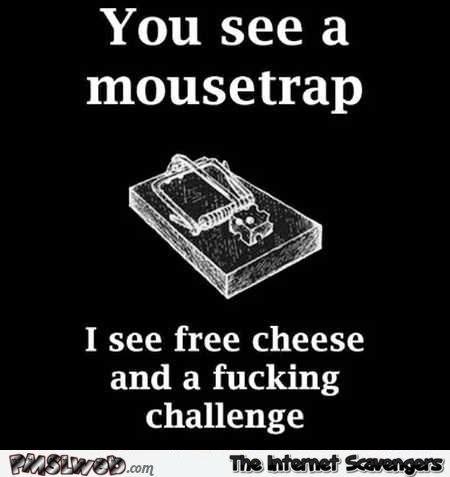 You see a mousetrap funny sarcastic picture @PMSLweb.com