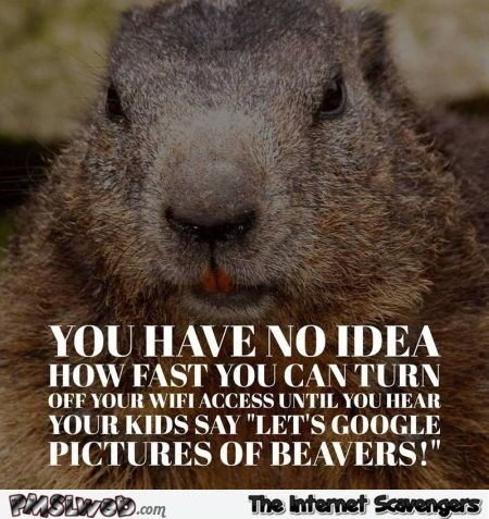 When kids want to google pictures of beavers adult humor @PMSLweb.com