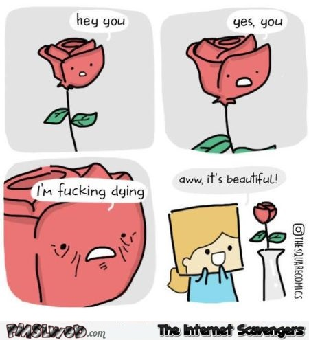 Cut rose is dying funny cartoon @PMSLweb.com